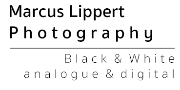 Marcus Lippert